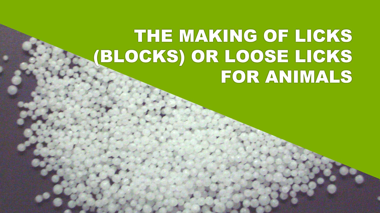 The Making Of Licks (Blocks) Or Loose Licks For Animals